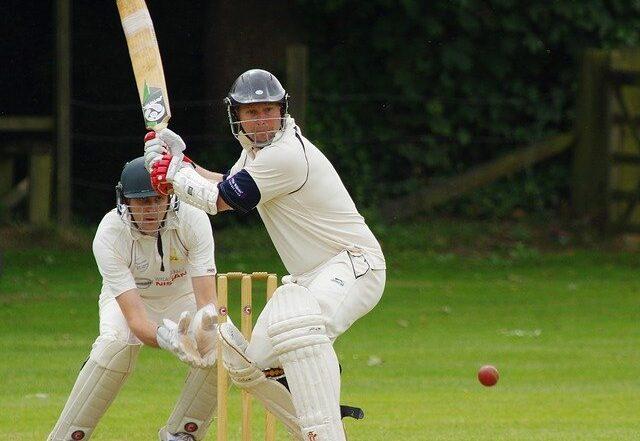 cricket-724617_640.jpg